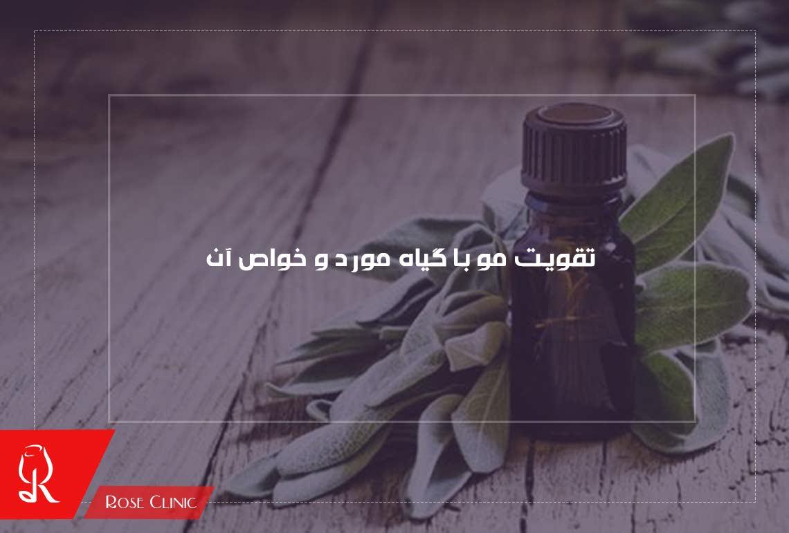 تصویر از تقویت مو با گیاه مورد و خواص آن